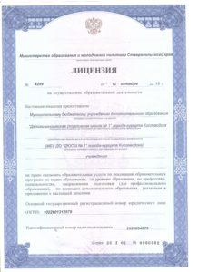 лицензия дюсш нов 001
